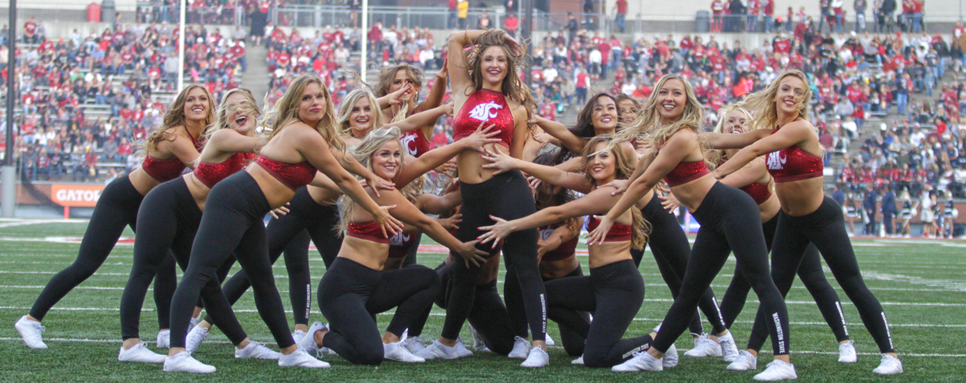 Image result for washington state cheerleaders