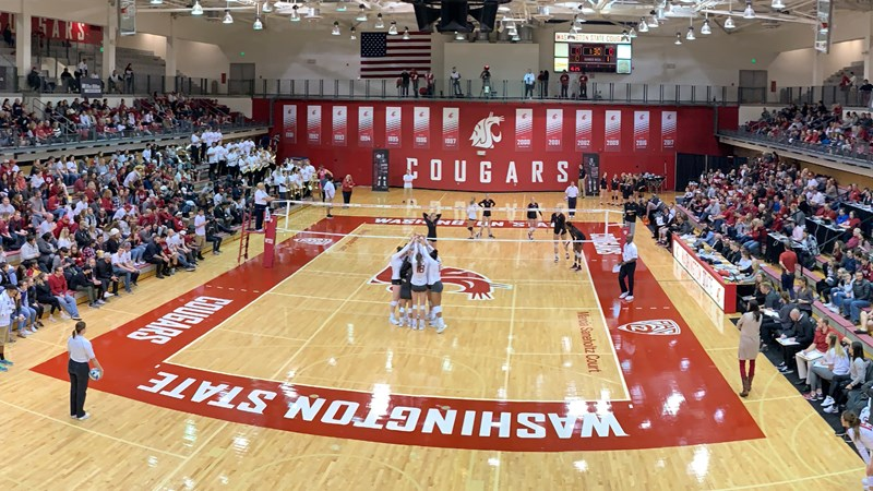 2020 Volleyball Signing Class Complete - Washington State University Athletics
